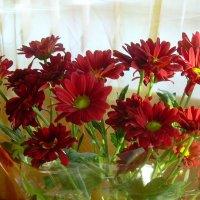 Букет цветов :: татьяна
