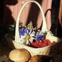 Подарки солнечного лета :: nika555nika Ирина