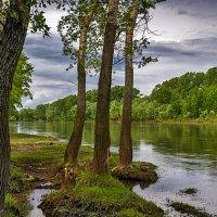 У полноводной реки :: Любовь Потеряхина