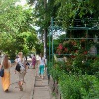 Запорожаночки в нашем дворе :: Нина Корешкова