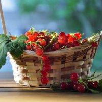 Урожай :: Иван Помидоров