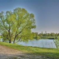 Река :: Виктор Филиппов