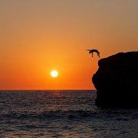 Прыжок в закат :: Владимир Бадюля