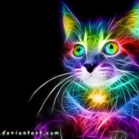 Rainbow Cat :: Andy Kloxx Foxtronic