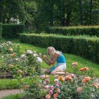поклонение розе :: Дмитрий Лупандин