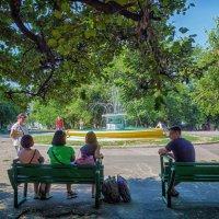 В тенечке, утреннего парка... :: Вахтанг Хантадзе