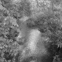 Небольшая   речка   в   Чукаливке :: Андрей  Васильевич Коляскин