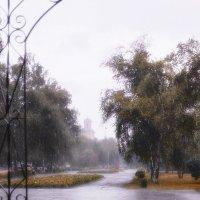 Дождик :: Кирилл Богомазов