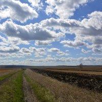 Весной - по дороге домой... :: Дмитрий Петренко