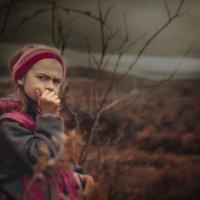 Осень :: Светлана Высоцкая