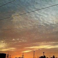 Закат над городом :: Люша