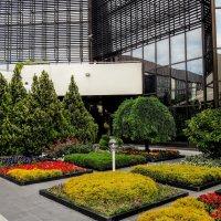 Внутренний дворик аэропорта Сочи :: Tata Wolf