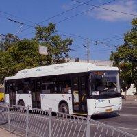 Новый автобус в городе :: Александр Рыжов