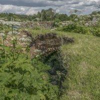Николо-Теребенский женский монастырь. Развалины подземной церкви Александра Свирского. :: Михаил (Skipper A.M.)
