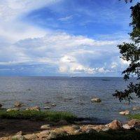 На берегу Финского залива :: Ирина Румянцева