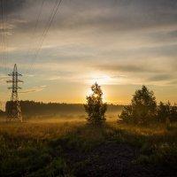 туман :: АРТЕМ GreenEzhik