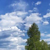 Будет дождь! :: Алексей Масалов