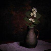 Натюрморт с цветком. :: vlad alferow