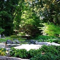 Японский садик... :: Galina Dzubina