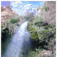 Водопад Эйн Геди :: irina Schwarzer