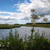 Озеро :: Тамара Цилиакус