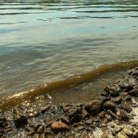 Всплеск волны на речке :: Владимир Деньгуб