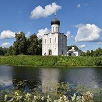 Церковь Покрова на Нерли 12 век :: Татьяна