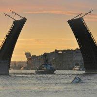 Мост :: Алексей Астафьев