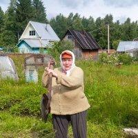После обильных осадков :: Александр Силинский