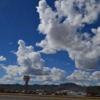 ...по дороге  с облаками :: Таня Фиалка
