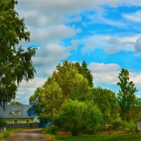 Вдоль деревни... :: Юрий