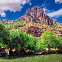 Армения-красавица :: Адель