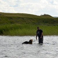 Все хотят купаться... :: Дмитрий Петренко