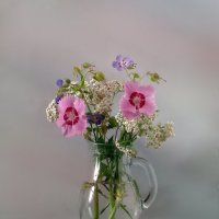 Букетик с гвоздикой травянкой - очень хрупким созданием :: SaGa