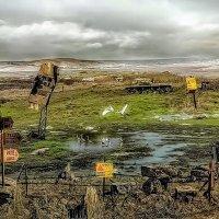 Инсталляции на минном поле. :: Ron Леви
