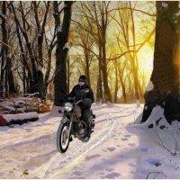 Дорожка снеговая :: irina Schwarzer