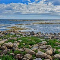 Берег Белого моря. Соловецкие острова. :: Николай