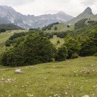 Дурмитор, Национальный парк, Черногория :: Владимир Новиков