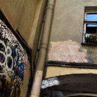 краски города :: Оксана Орлова