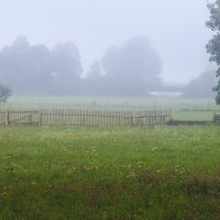 Приходил туман украдкой рано утром, на заре. :: Ирина ...............