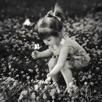 порхают цветы... волшебство или сон?.. :: Gala *