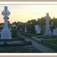 Ирландское кладбище :: Марина Домосилецкая