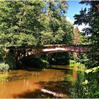 Лесной мостик. :: Валерия Комова