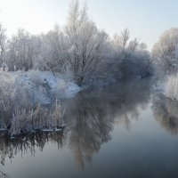 Морозное утро :: Роман В.