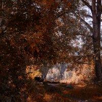 Пейзаж с деревом :: Кирилл Богомазов