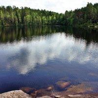Национальный парк «Реповеси». Озёро Катаяярви :: Елена Павлова (Смолова)