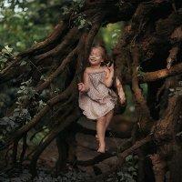 Сказочный лес :: Маргарита