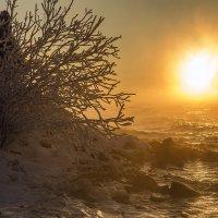 Зимний вечер на водохранилище 2017 :: Юрий Клишин