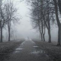 Не ЧБ :: Владимир Колесников
