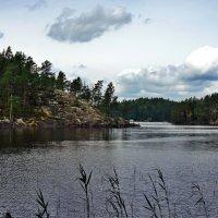 Национальный парк «Реповеси». Озеро :: Елена Павлова (Смолова)